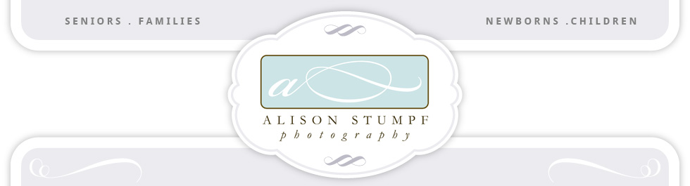 Alison Stumpf Photography Blog logo